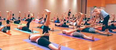 13th Annual YogaFest 2019
