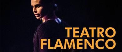 Diana Reyes Flamenco – Teatro Flamenco