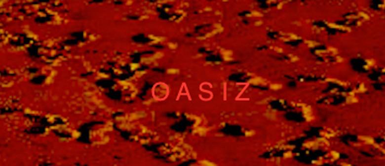 Spring OASIZ Workshop