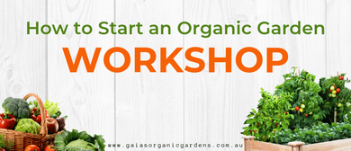 How to Start an Organic Garden Workshop