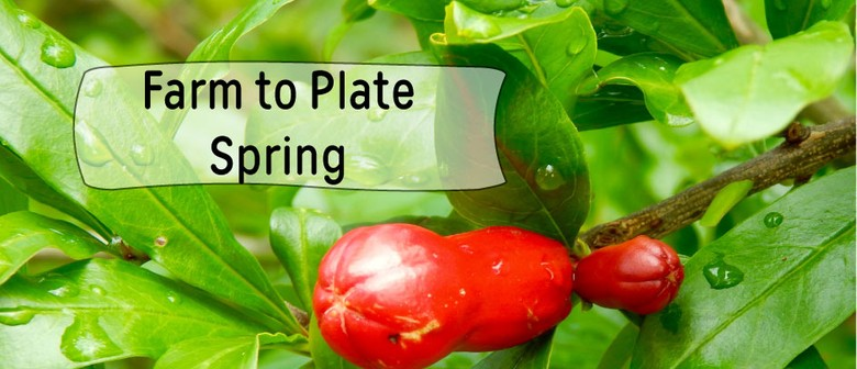 Farm To Plate – Spring