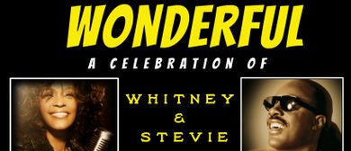 Wonderful – Stevie Wonder and Whitney Houston Show