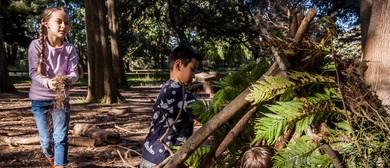Bush Rangers – Tracks, Trails and Treasure Hunts