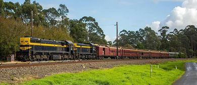 Tocumwal Markets Heritage Train