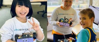 Robotics Holiday Program