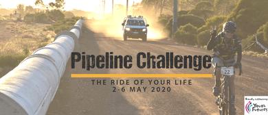 Pipeline Challenge 2020