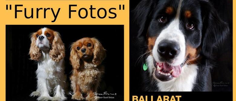 Ballarat International Foto Biennale - Four Foot Fotos
