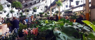 Indoor Plant Sale – Rumble In the Jungle