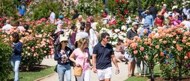 State Rose & Garden Show 2019