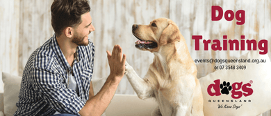 Dog Training – 6-Week Course