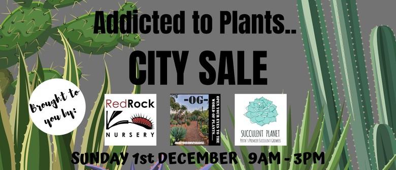 Addicted to Plants City Sale