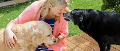 Animal Communication Training