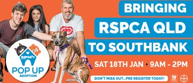 RSPCA Pop Up Adoption 2020