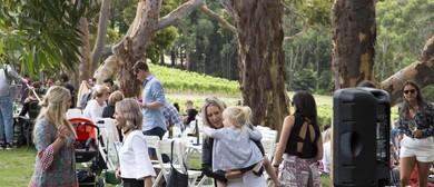 Australia Day Lawn Event