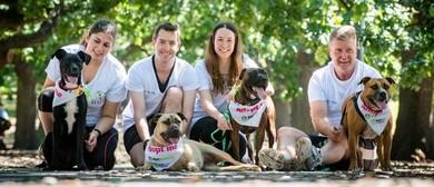 PETstock Assist's National Pet Adoption Day