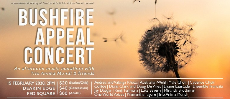 Trio Anima Mundi and Friends: Bushfire Appeal Concert