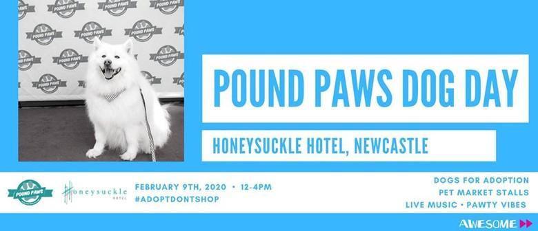 Pound Paws Dog Day