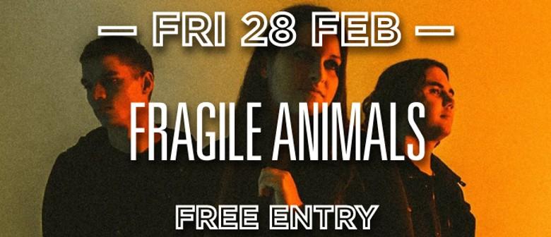 Fragile Animals, Milo Hunter, Syrup, Go On