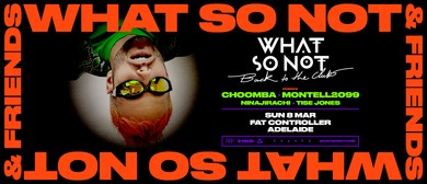 What So Not & Friends