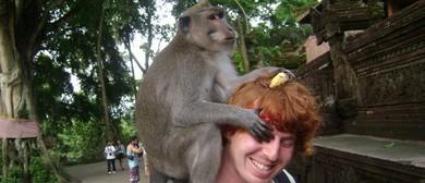 I Got Bit By a Monkey Once – Melbourne Int'l Comedy Festival