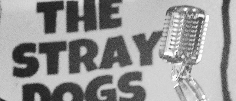 Rockabilly & Vintage Rock N Roll With the Stray Dogs