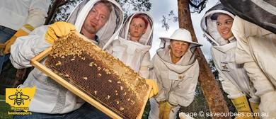 Illawarra Beekeepers Open Day 2020