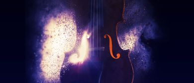 Pyrotechnic Violin