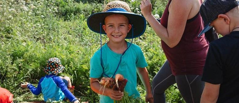 Farm Tour for Families: POSTPONED