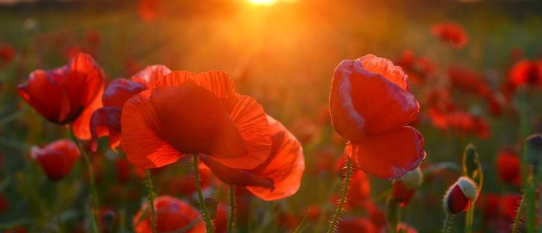 An ANZAC Sunset