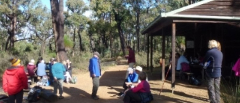 Social Sunday Walk – Brookton Highway to Canning Campsite