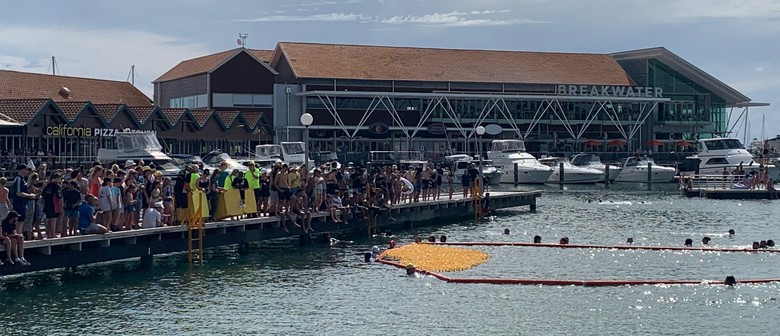 Duck Derby for Rotary