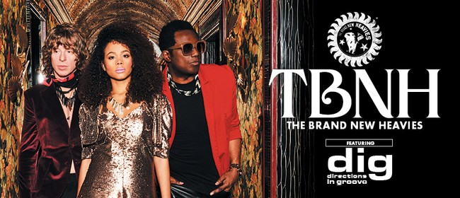 Image for The Brand New Heavies ft. D.I.G.