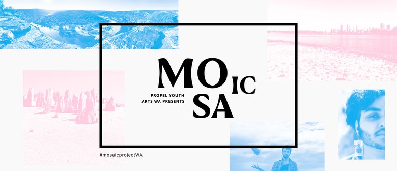 Mosaic Capture Day 2020