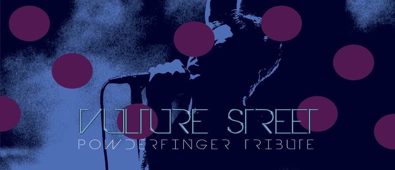 Vulture Street - Powderfinger Tribute Summer Special