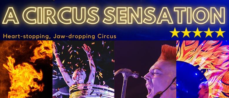 A Circus Sensation - Fringe World Festival 2021 by ZAPcircus