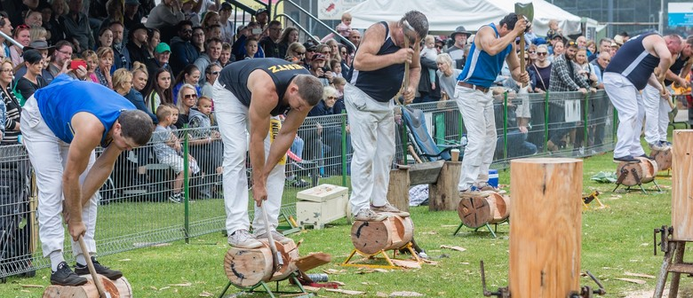 93rd Red Hill Show