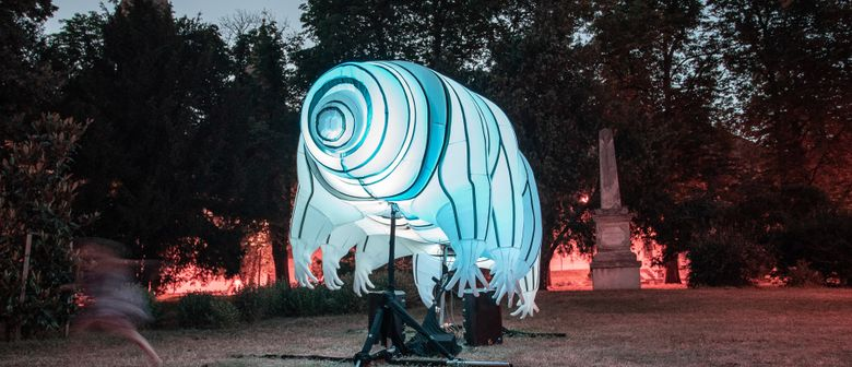 Water Bear - Light Art Installation