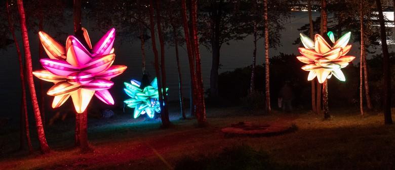 Hidden Garden - light art installation