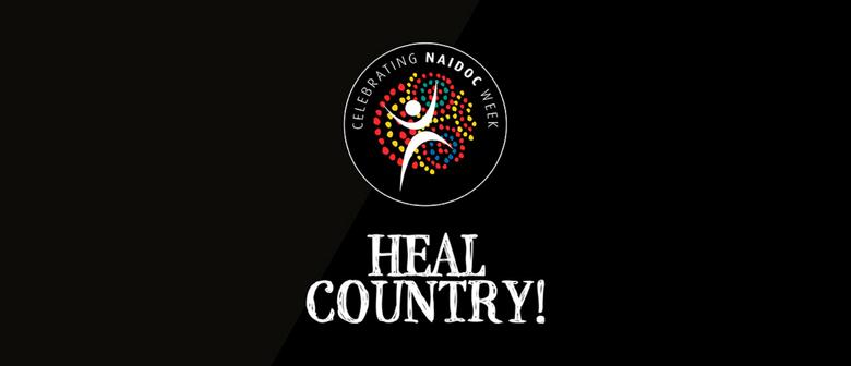 Indigenous Olympians Outdoor Exhibition