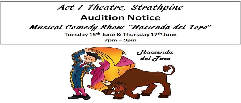 "Auditions - Musical Comedy Show ""Hacienda Del Toro"""