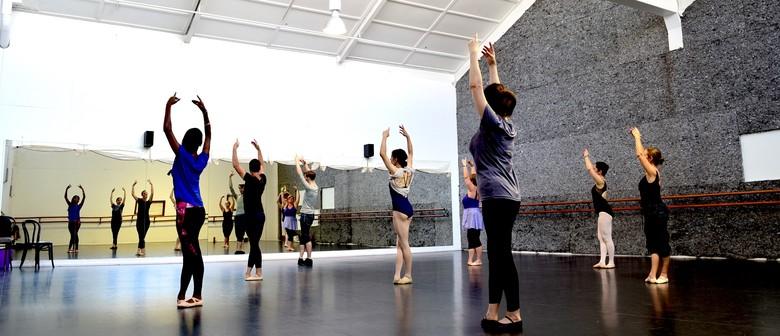 City Adult Ballet Beginner Ballet