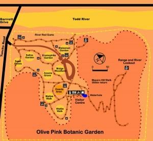 Olive Pink Botanic Gardens Alice Springs Eventfinda