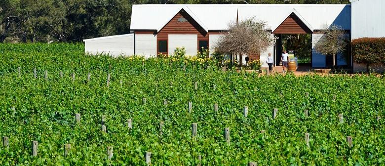 Upper Reach Winery